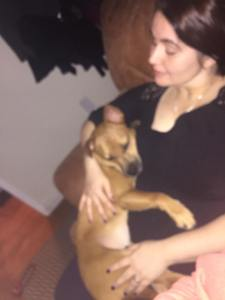 A slightly blurry shot of a woman in black cuddling a small short-haired fawn-colored dog on her lap